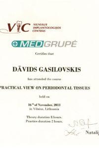 Сертификат - Гасиловский Давид Сергеевич